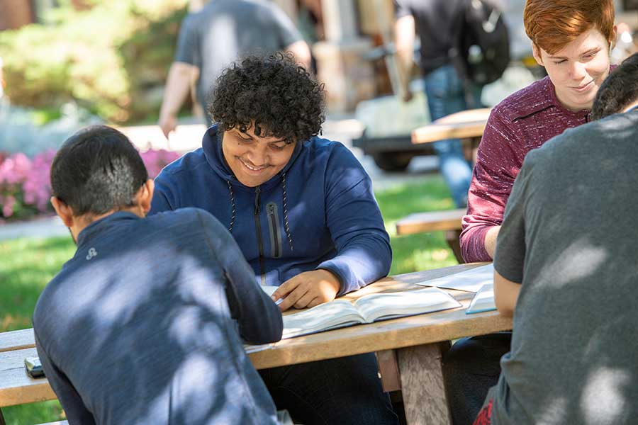 Students studying in quad